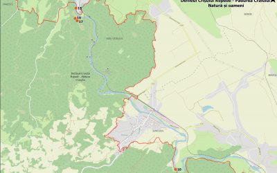 Descoperă situl Natura 2000  Defileul Crișului Repede – Pădurea Craiului  (Traseu tematic – Natură și oameni)